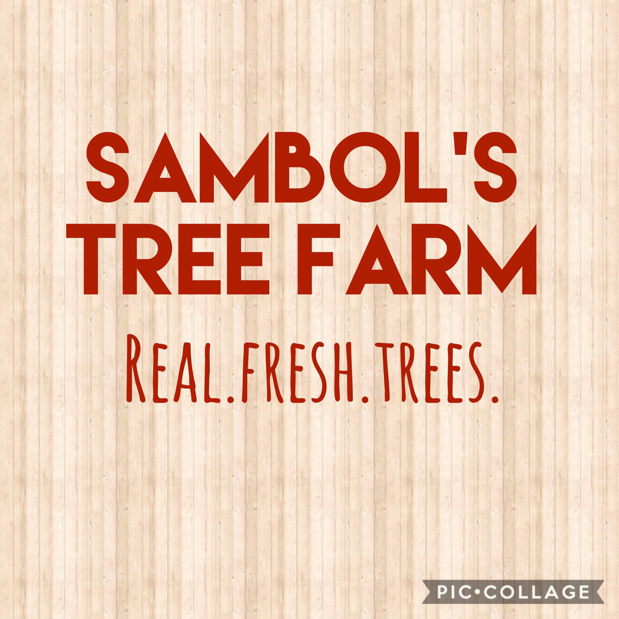 Sambol's Tree Farm logo