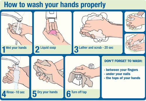 how to wash your hands properly: 1. wet your hand 2. use soap 3. later and scrub 20 seconds 4. rinse