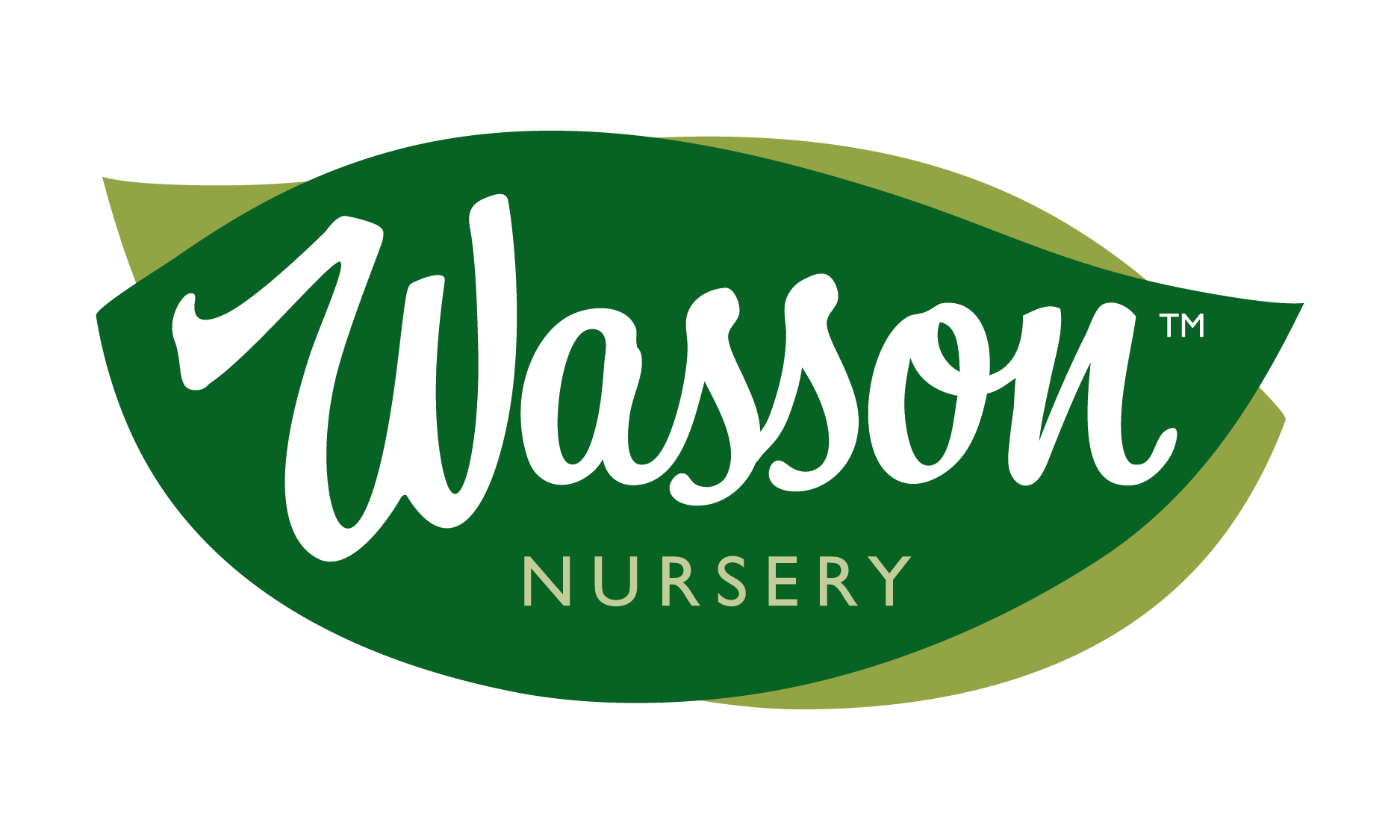 wasson nursery logo
