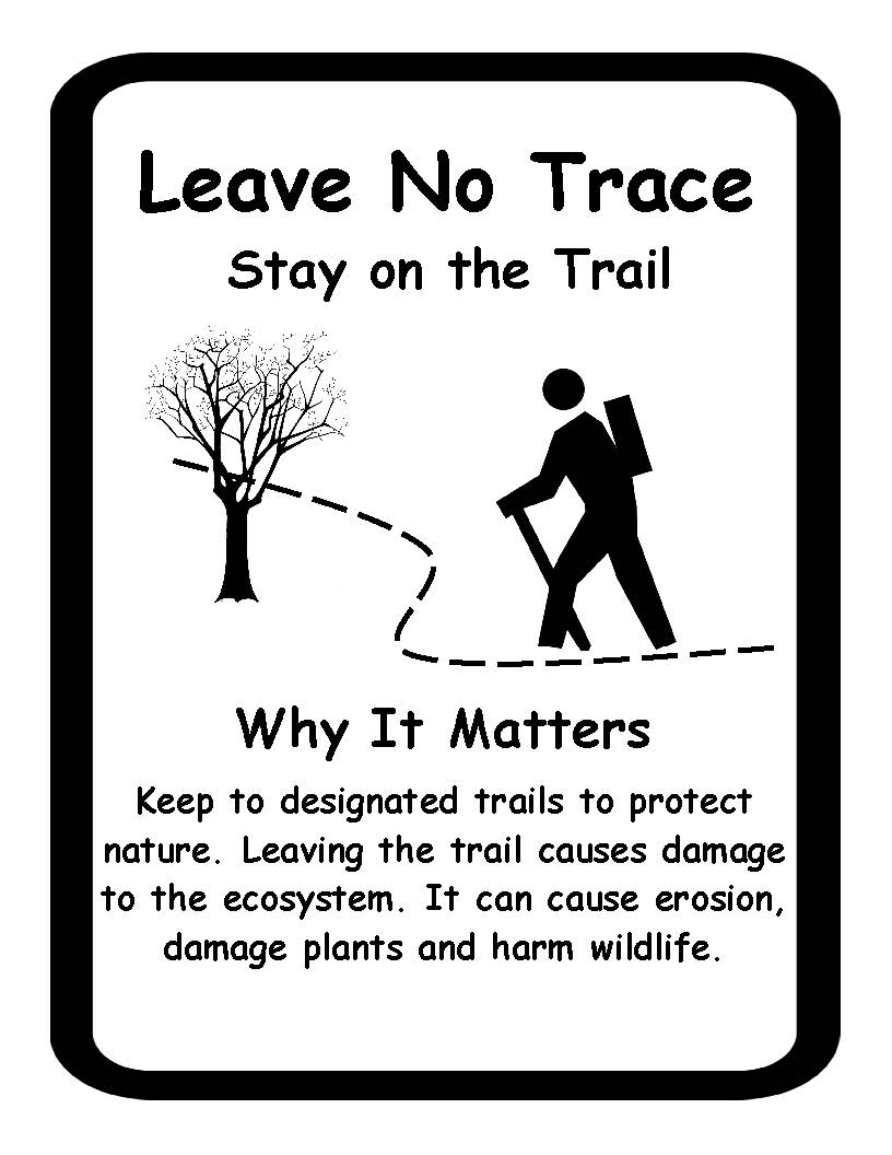 Leave no trace 2
