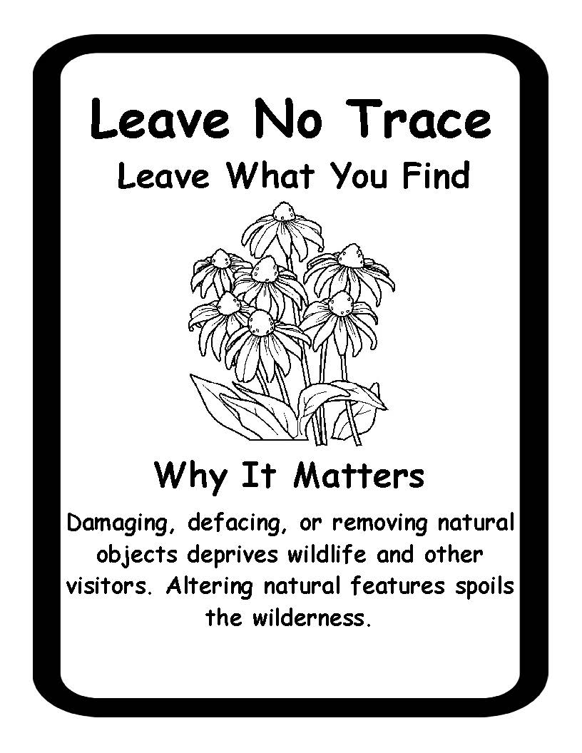 Leave no trace 3