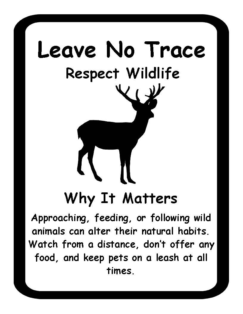 Respect wildlife coloring pages for Leave no trace coloring page