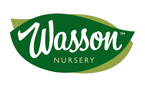 wasson nursery